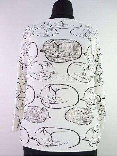Megztiniai Kačiukai 2