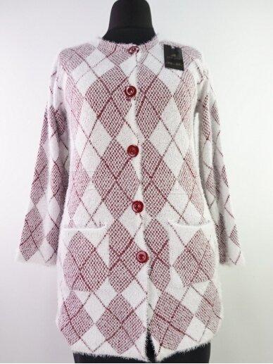 Šviesus su raudona megztinis