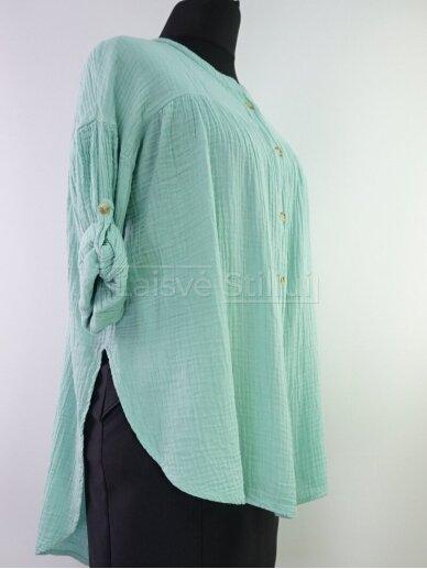 Vienspalviai marškiniai 2